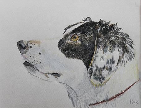 Rescue Love by Jody Neugebauer