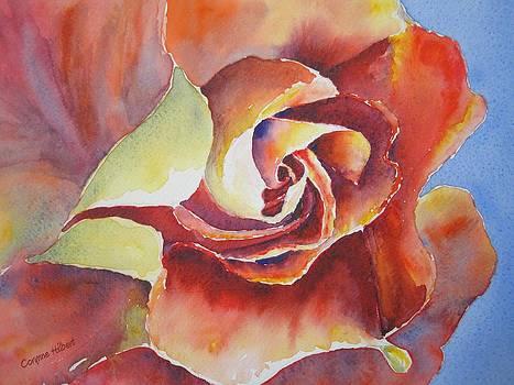 Resplendent Rose by Corynne Hilbert