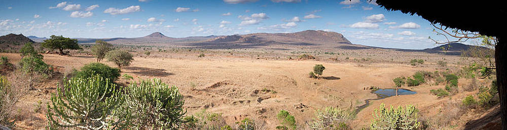 Howard Kennedy - Rhino Valley Tsavo West