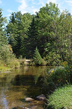 Rifle River in Sept 3 by Jennifer  King
