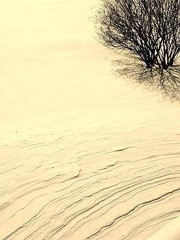 Kimberly Perry - Ripples in the Snow