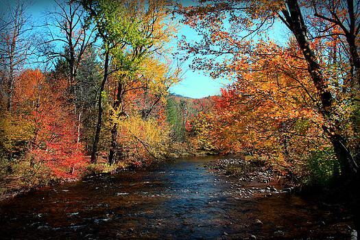 River Forever  by Mark Ashkenazi