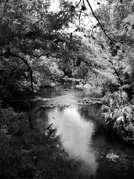 River by LDPhotography Stephanie Armstrong