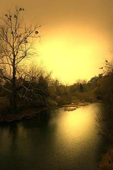 Nina Fosdick - River of Tranquility