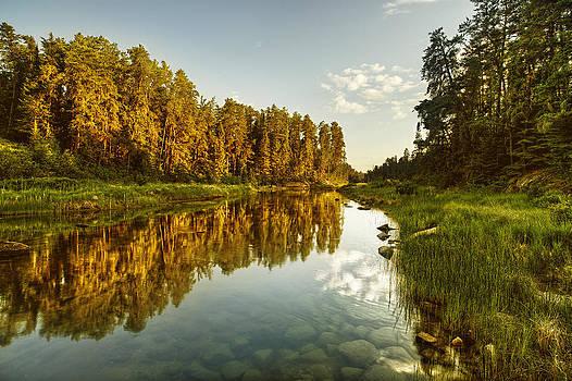 River Reflections by Stuart Deacon