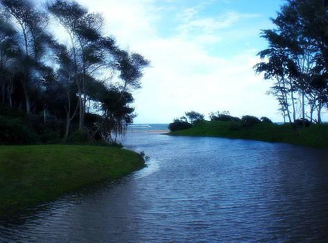 River to Hukilau by Ruth Kongaika