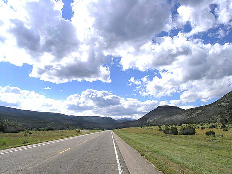 Road to Cimmaron NM by Vicki Coover
