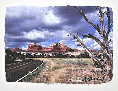 Road to Moab by Gail Fischer
