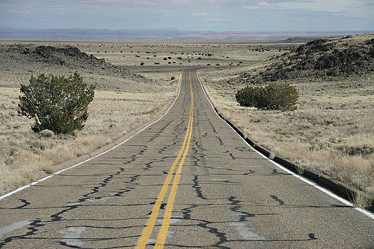 Road to Nowhere by Alex Vilner