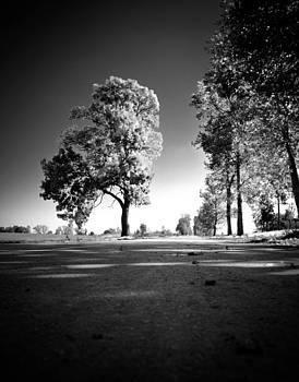 Road to somewhere by Domagoj Borscak