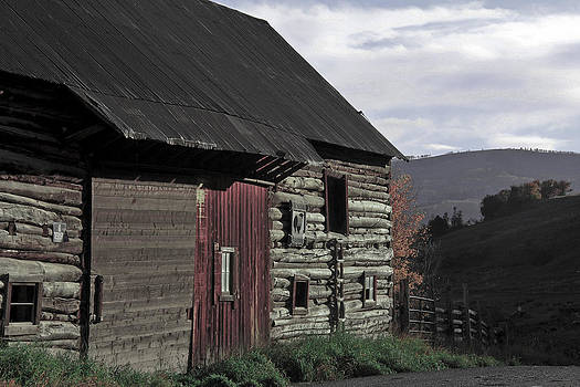Roadside barn by Marta Alfred