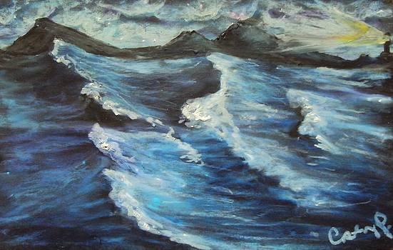Casey P - Roaring Sea