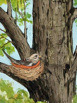 Robin Nesting by LaReine McIlrath