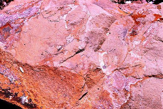 Rock Art 5 by M Diane Bonaparte