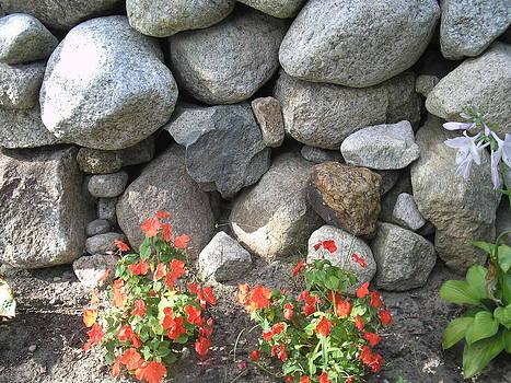 Valerie Bruno - Rock Wall