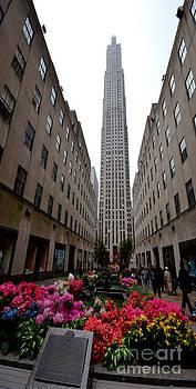 Pravine Chester - Rockefeller Center