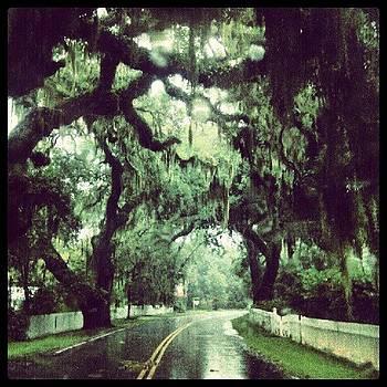 Rockville South Carolina by Dustin K Ryan