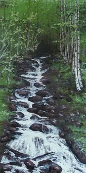 Rocky Falls by Scott Melby
