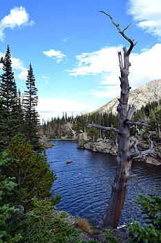 Rocky Mountain National Park1 by Zawhaus Photography