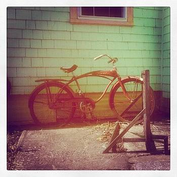 Rocky Neck Bike by Tricia ONeill