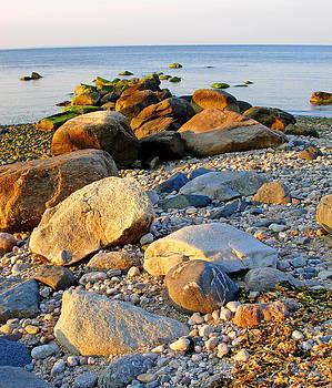 Rocky Shore Long Island Sound by Harvey Gardner