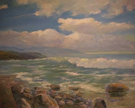 Rocky Shoreline by Jim Noel