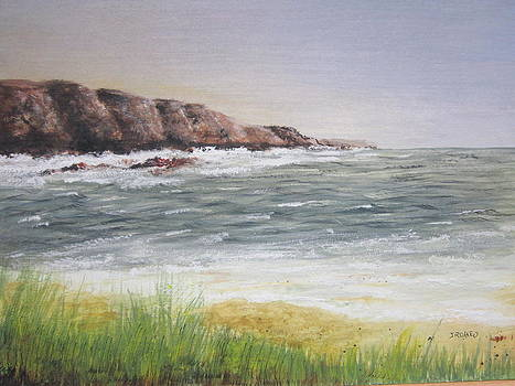 Rocky Shoreline  by Jim  Romeo
