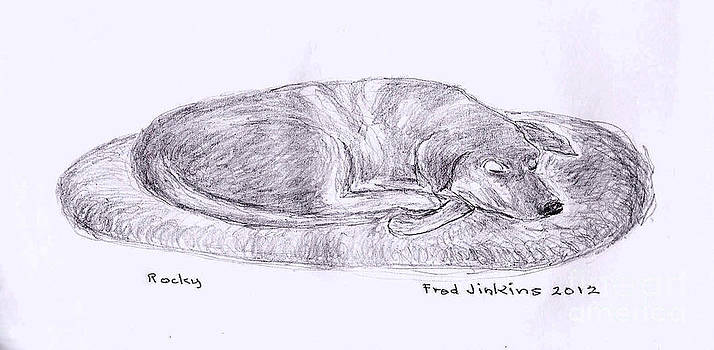 Rocky Sleeping by Fred Jinkins