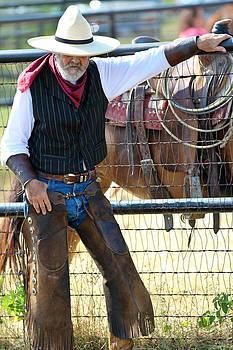 Rogue Rancher by Elizabeth Hart