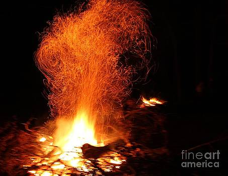 Roiling Fire by Theresa Willingham
