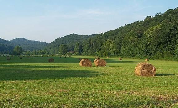 Rollin' Hay by Cumberland Studios