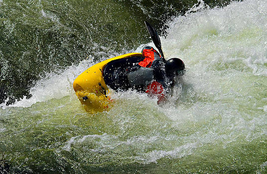 Rolling Down the River  by Susan Leggett