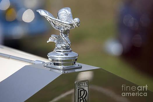 Rolls Royce by Tad Kanazaki