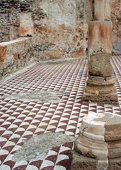 Roman Mosaic At Villa Sileen, Libya by Joe & Clair Carnegie / Libyan Soup