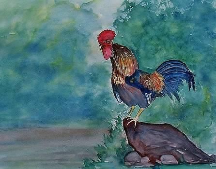 Rooster by Shashikanta Parida