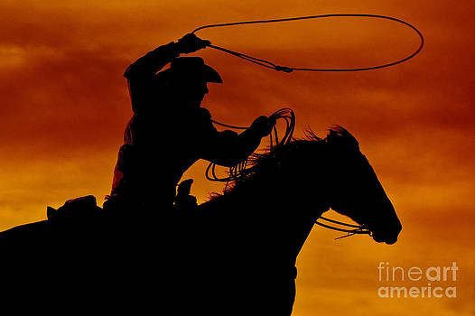 Ropin' at Sunset by Heather Swan