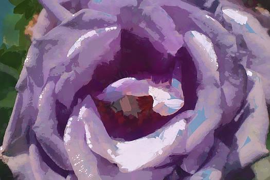Rose by Boguslaw Florjan