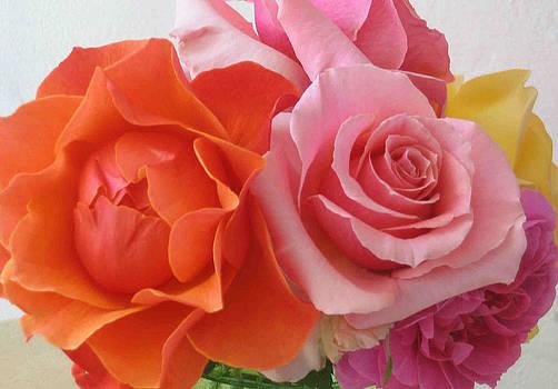 Rose Detail by Laurel Porter-Gaylord