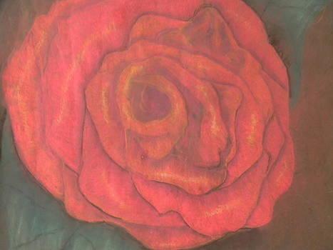 Rose by Mahalaleel Muhammed-Clinton