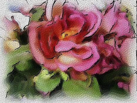 Roses  by Morgana Blackcat