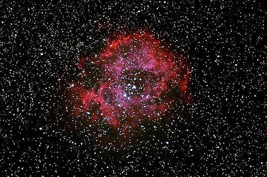 Rosette Nebula by Rick Jack