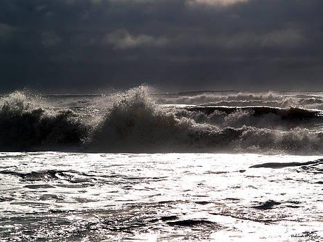 Deborah Hughes - Rough Waves 2