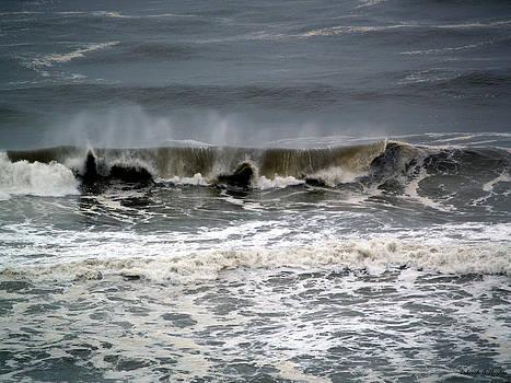 Deborah Hughes - Rough Waves 4