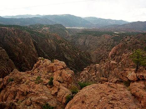 Royal Gorge by Anne Back