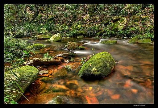 Royal Stream by Michael Thoms