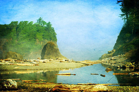 Ruby Beach Dreams by Terrie Taylor
