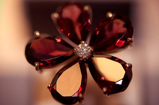 Jenny Rainbow - Ruby Ring. Spirit of Treasure