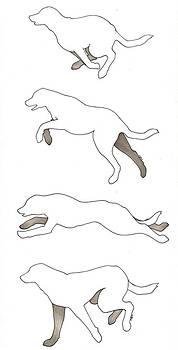 Running Dogs by Sydney Stafl