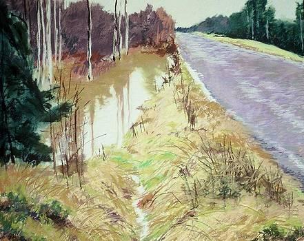 Runoff by Mary McInnis