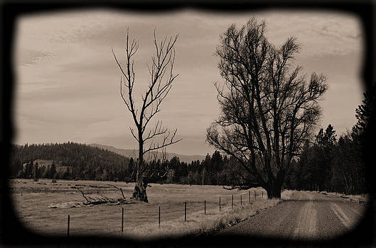 Rural daguerrotype style photograph - Along a Country Road by Light Shaft Images